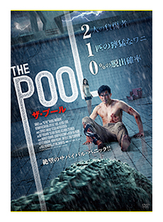 THE POOL / ザ・プール